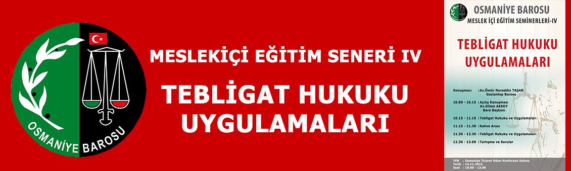 MESLEKİÇİ EĞİTİM SEMİNERİ IV