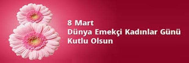 8 Mart …Merhamet Değil…İradeye Saygı…